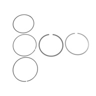 BMW-11251403810-11-25-1-403-810-SF-NPR-Piston-Ring-Set-sm.jpg