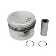 BMW-11251714810-11-25-1-714-810-SF-Mahle-Piston-sm.jpg