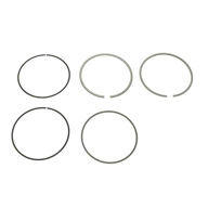 BMW-11259071606-11-25-9-071-606-SF-Mahle-Piston-Ring-Set-sm.jpg