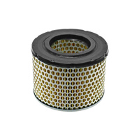 BMW-13721254660-13-72-1-254-660-SF-Mahle-Air-Filter-sm.jpg