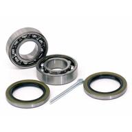 BMW-33411108408-33-41-1-108-408-SF-SKF-Wheel-Bearing-Kit-sm.JPG