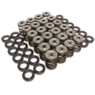 Epic_Valve_Springs_1_TN.jpg