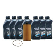 oil-change-inspection-1-BMW-5W30-Diesel-OEM-filter-kit-ps-tn.jpg